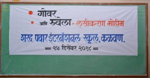 Rubella and Measles Vaccination Camp (1)
