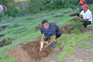 Tree Plantation at SPIS (10)