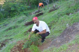 Tree Plantation at SPIS (11)