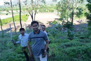 Tree Plantation at SPIS (15)