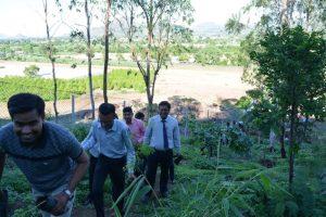 Tree Plantation at SPIS (16)