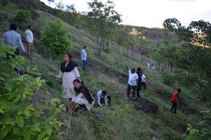 Tree Plantation at SPIS (18)