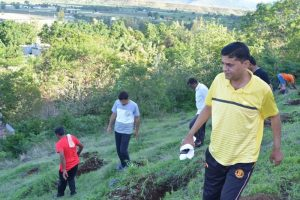 Tree Plantation at SPIS (2)