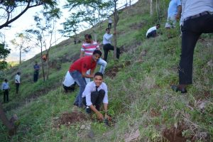 Tree Plantation at SPIS (20)