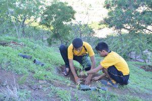 Tree Plantation at SPIS (21)