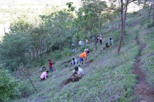 Tree Plantation at SPIS (23)