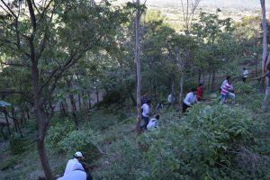 Tree Plantation at SPIS (24)