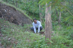 Tree Plantation at SPIS (26)