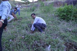 Tree Plantation at SPIS (28)