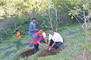 Tree Plantation at SPIS (7)